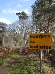 boswerkzaamheden
