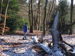 ruben in sneeuw